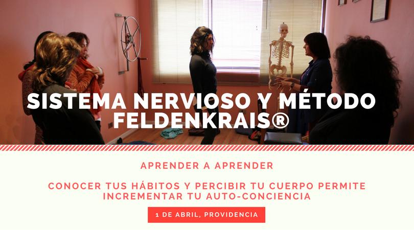 Sistema Nervioso y Método Feldenkrais (3).png