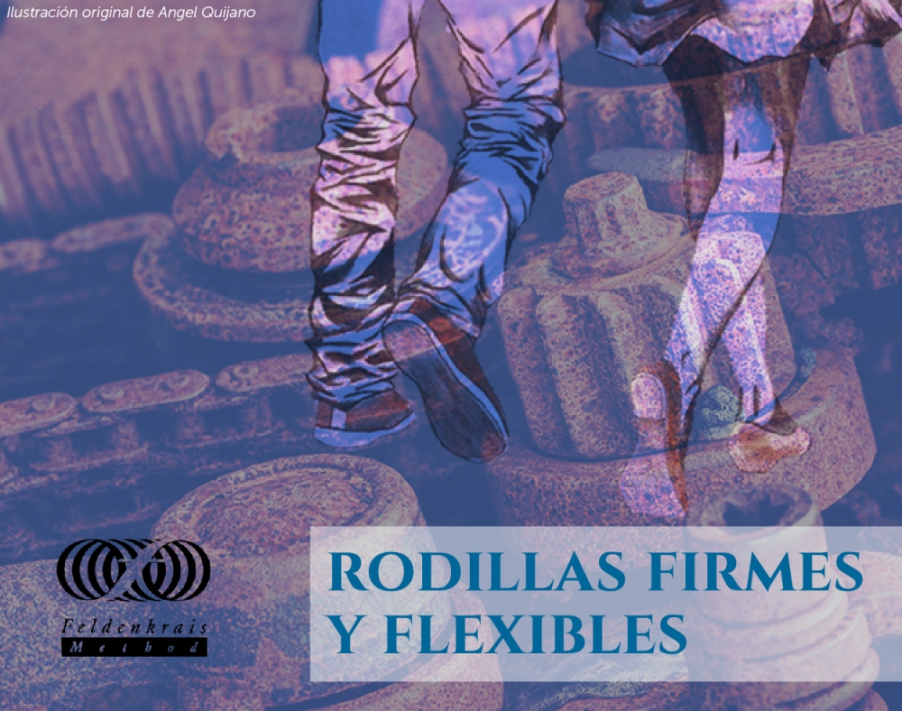 rodillas sendinblue-01