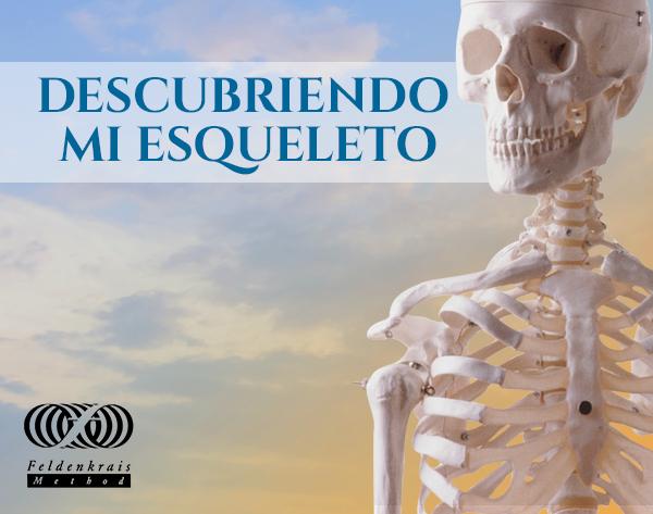 descubriendo esqueleto sendingblue